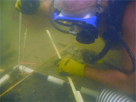 University of West Florida students return to EP II 16th century shipwreck site.